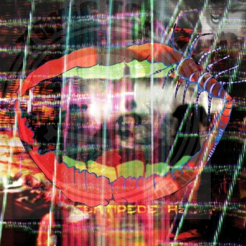 Animal Collective - Centipede Hz - LP