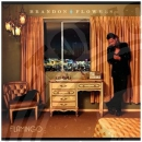 Brandon Flowers - Flamingo - CD